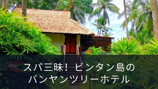 "<span class=""title"">スパ三昧!ビンタン島のバンヤンツリーホテル</span>"